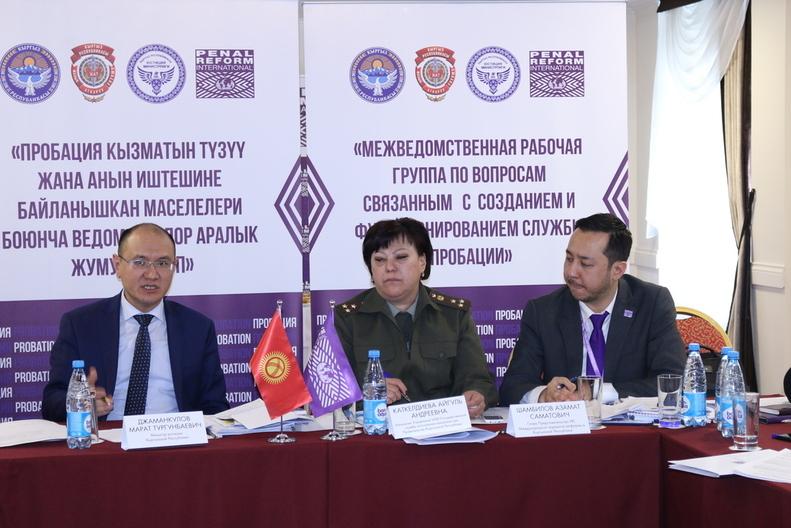 Заседание Межведомственной рабочей группы по Пробации 1.03.2019г.